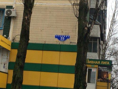 Кот Хатико в Белгороде на улице Губкина (5 фото)