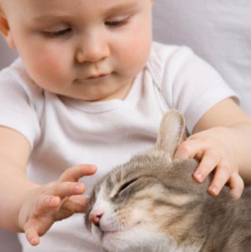 Замечательные малыши с очаровательными кошками (21 фото)