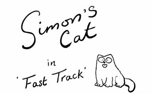 Кот Саймона и гоночная машинка
