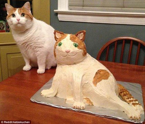 Ожидания vs. реальность: торты и сладости (13 фото)