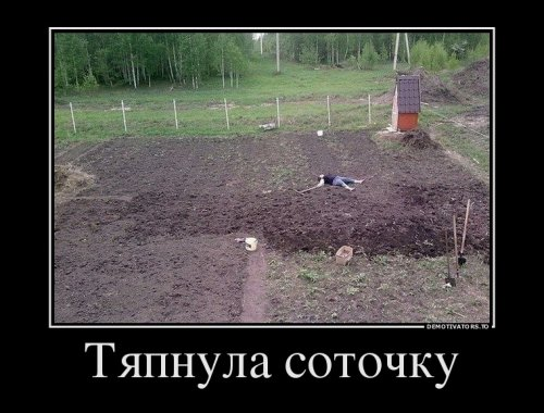 http://www.bugaga.ru/uploads/posts/2016-05/thumbs/1462518685_demotivatory-12.jpg