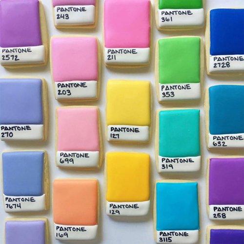Красочное печенье графического дизайнера (24 фото)