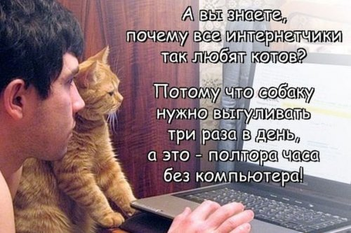 http://www.bugaga.ru/uploads/posts/2016-05/thumbs/1462960525_fotomemy-11.jpg