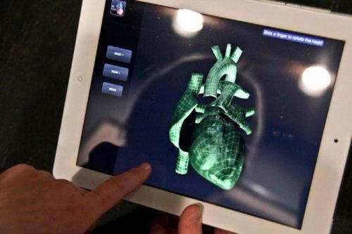 Анатомически правильное связанное сердце (9 фото)