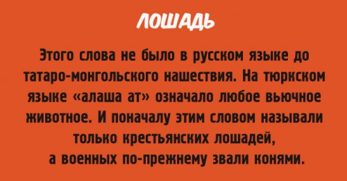 http://www.bugaga.ru/uploads/posts/2016-05/thumbs/1463389789_prioshozhdenie-slov-9.jpg