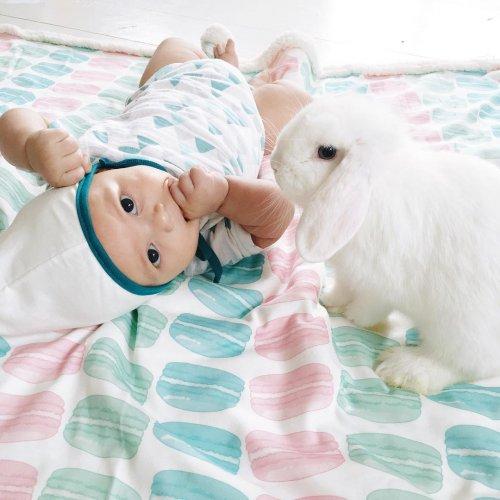 Очаровательные малыши и кролики в фотографиях Линдси Боннис (8 фото)
