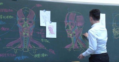 Наглядные пособия по анатомии, от которых не оторвать глаз (7 фото)