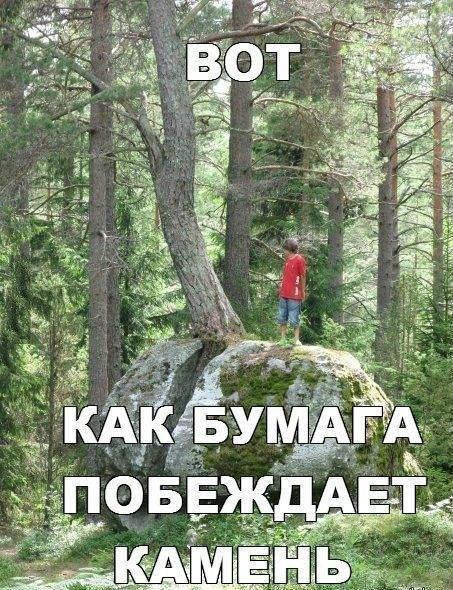 http://www.bugaga.ru/uploads/posts/2016-06/1464964420_fotomemy.jpg