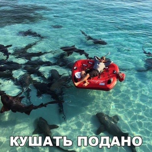 http://www.bugaga.ru/uploads/posts/2016-06/thumbs/1464867619_fotomemy-9.jpg