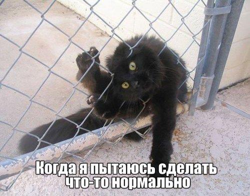 http://www.bugaga.ru/uploads/posts/2016-06/thumbs/1465544444_kartinki-35.jpg