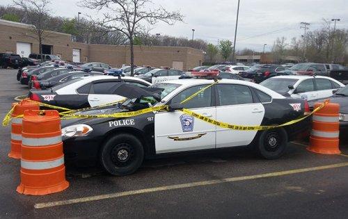 Горлица устроила гнездо на полицейской машине (3 фото)