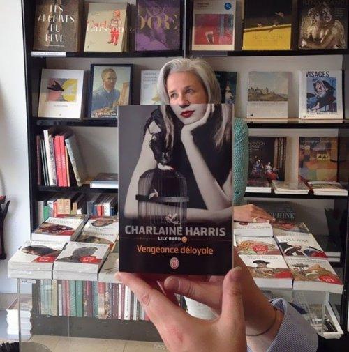 Забавные фотоиллюзии с книжными обложками (34 фото)
