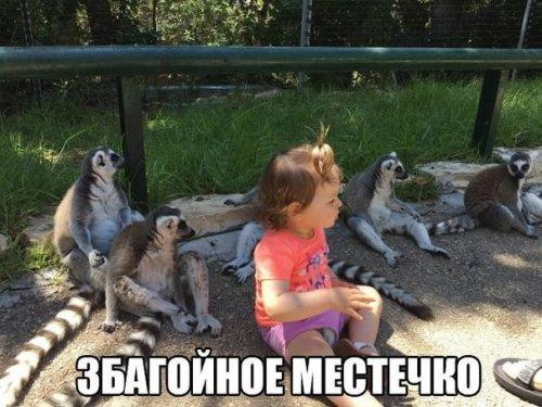 http://www.bugaga.ru/uploads/posts/2016-06/thumbs/1466411409_sbornik-memov-14.jpg