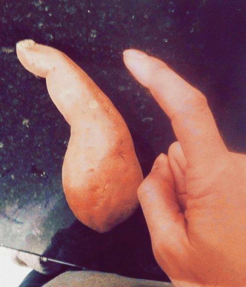 Плоды странной и необычной формы (20 фото)