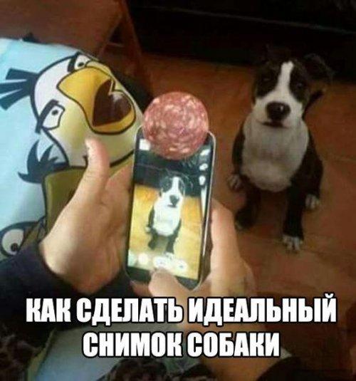 http://www.bugaga.ru/uploads/posts/2016-06/thumbs/1466658425_kartinki-17.jpg