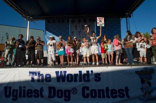 В Калифорнии выбрали самую уродливую собаку в мире (27 фото)