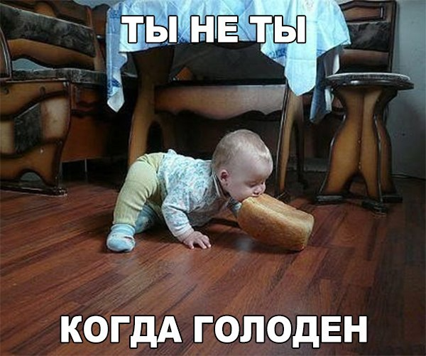 Другу, голод смешная картинка