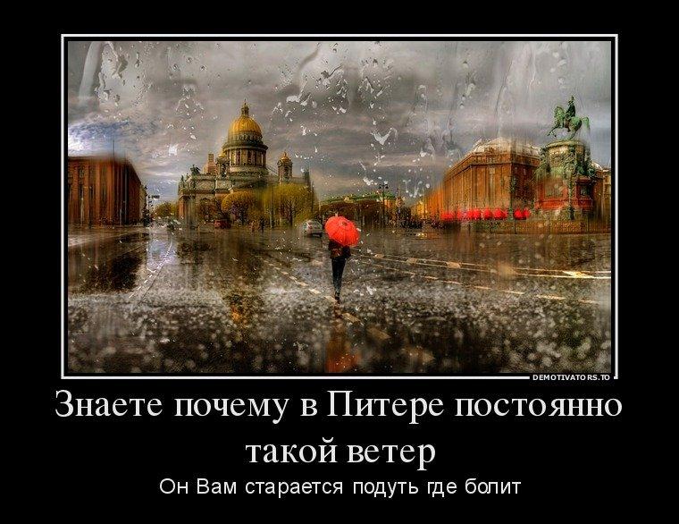 дождь в питере картинки смешные мой