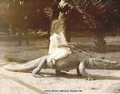 Топ-10: Странные фотографии людей верхом на животных