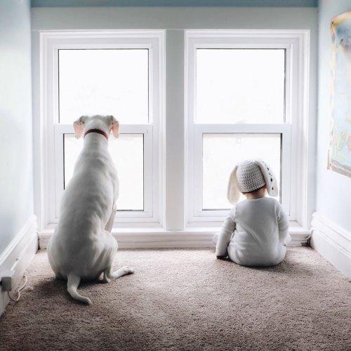 Собака, взятая из приюта, стала лучшим другом 8-месячного Арчи (9 фото)