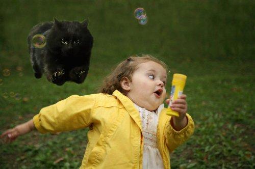 Чёрная кошка прервала регбийный матч, став героиней фотожаб (18 фото)