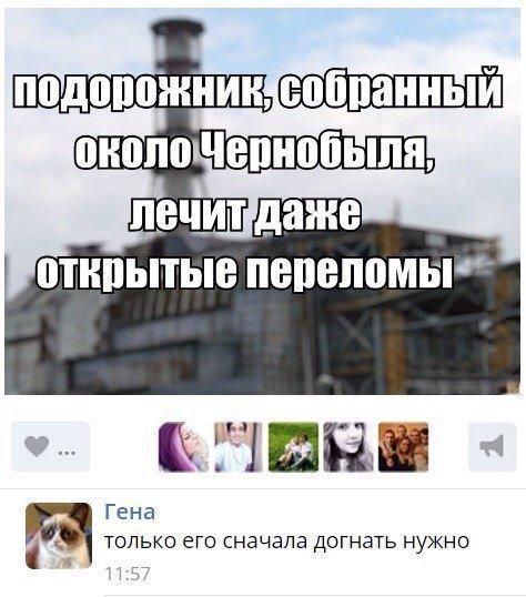 Прикольные комментарии из социальных сетей (18 фото)