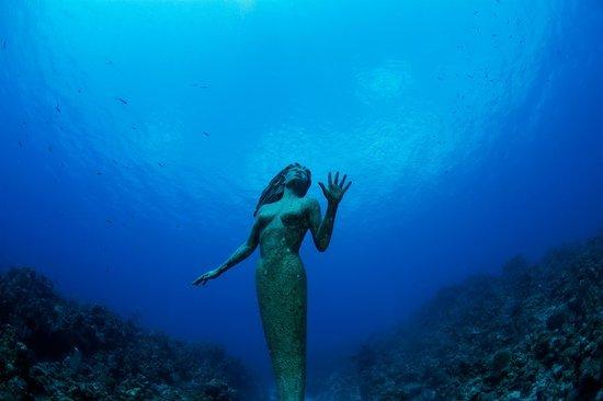 под водой скачать торрент