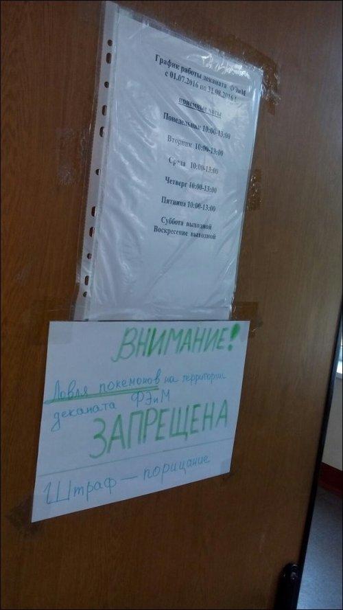 Смешные вывески, надписи и объявления (16 фото)