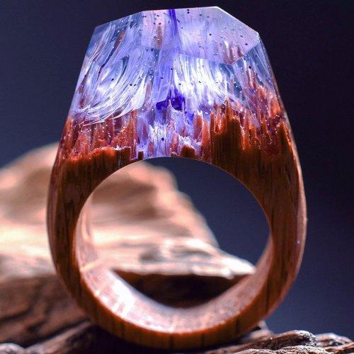 Миниатюрные миры внутри деревянных колец (14 фото)