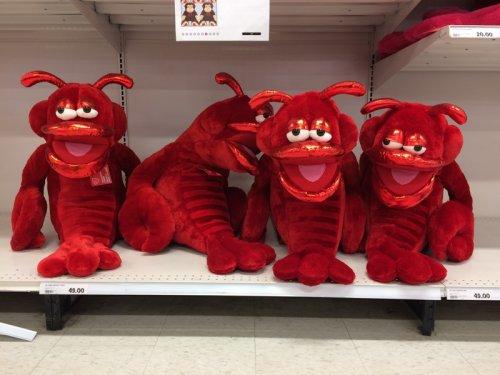 Маразмы в магазинах: самые странные игрушки (13 фото)