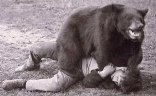 Топ-10: Странные и необычные аттракционы прошлого с участием животных