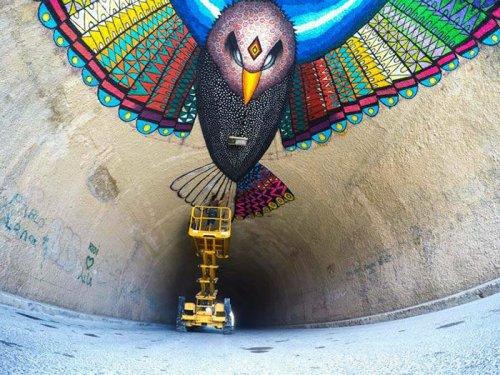 Рисунок летящего орла, созданный стрит-арт художником Spaik (2 фото)