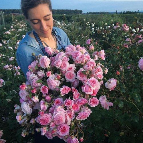 Цветочный Instagram флористки Эрин Бензакин (14 фото)