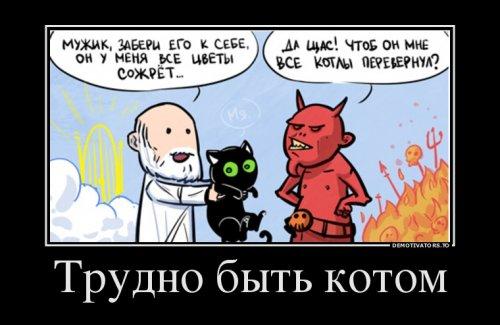 http://www.bugaga.ru/uploads/posts/2016-08/thumbs/1472024049_demotivatory-1.jpg