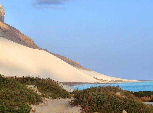 Невероятная природа острова Сокотра (19 фото)