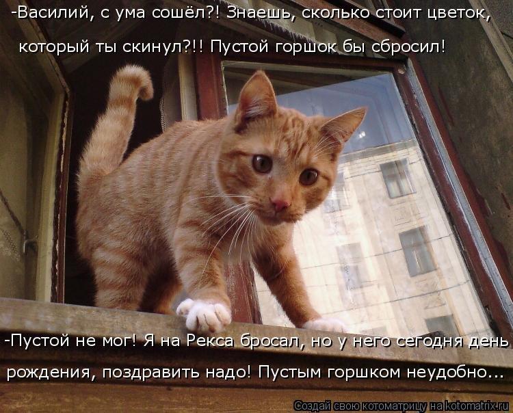 Картинки с надписью че сказала города ченстохов