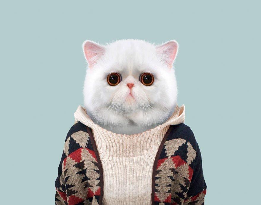 Картинки животных в одежде людей