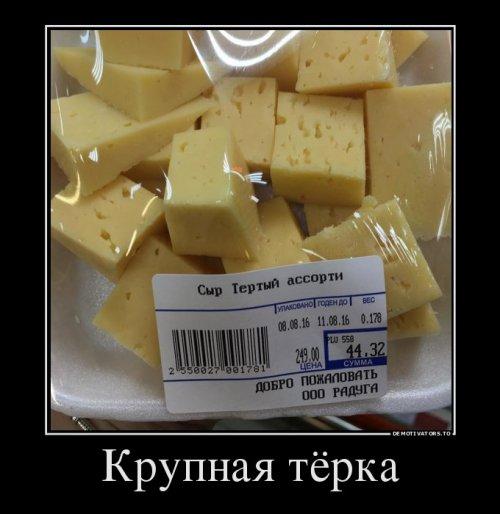 Свежая порция демотиваторов (12 шт)