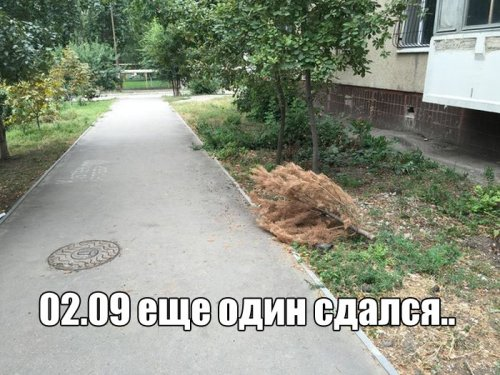 http://www.bugaga.ru/uploads/posts/2016-09/thumbs/1473140296_kartinki-14.jpg