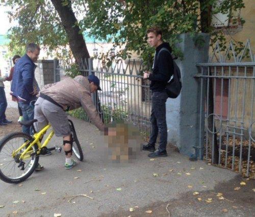Необычная кошка на улицах Уфы (4 фото)