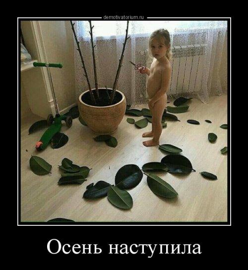 http://www.bugaga.ru/uploads/posts/2016-09/thumbs/1473316492_demotivatory.jpg