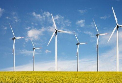 Необычная фотография 14 ветротурбин в ряд