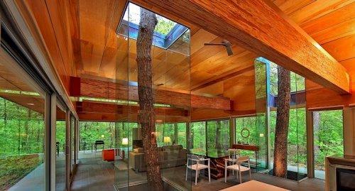 Дома и сооружения, сквозь которые растут деревья (11 фото)