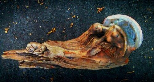 Скульптуры Дебры Бернье из высохших деревьев (17 фото)