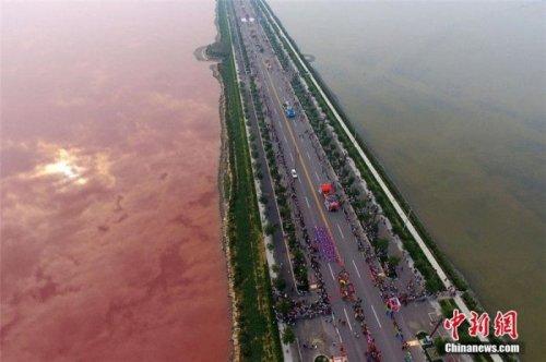 Китайское озеро Яньху окрасилось в розовый цвет (3 фото)