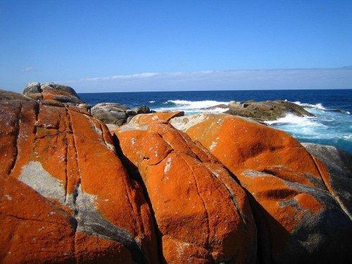 Оранжевые скалы Залива Костров в Тасмании (9 фото)