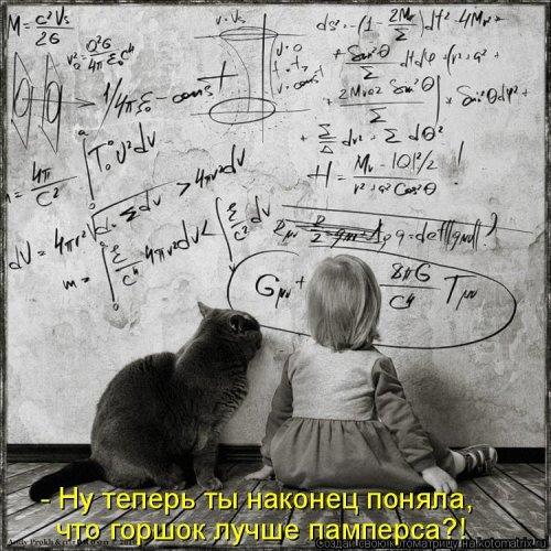 Свежая котоматрица (38 фото)