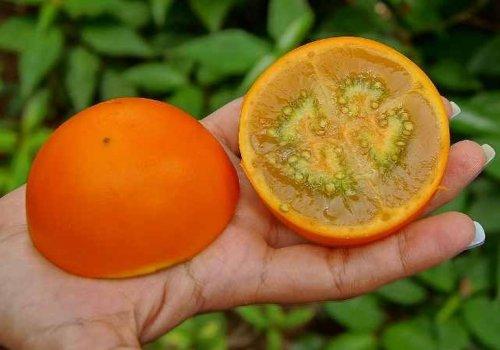 Необычные экзотические фрукты, о которых мы ещё не рассказывали (11 фото)