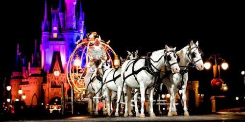 Ночная свадьба в Disney World (9 фото + видео)