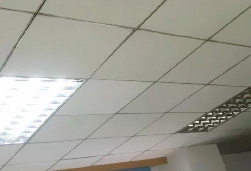 Тот самый момент, когда в офисе поняли, что за ними следят (3 фото)